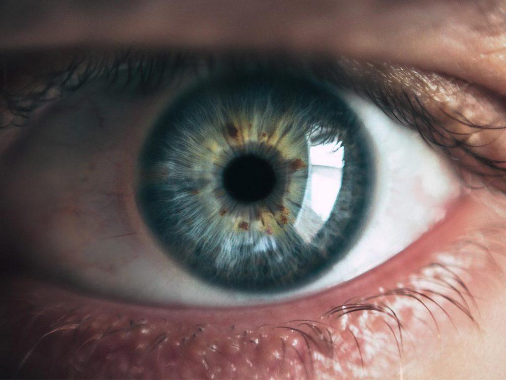 Fatos sobre a visão