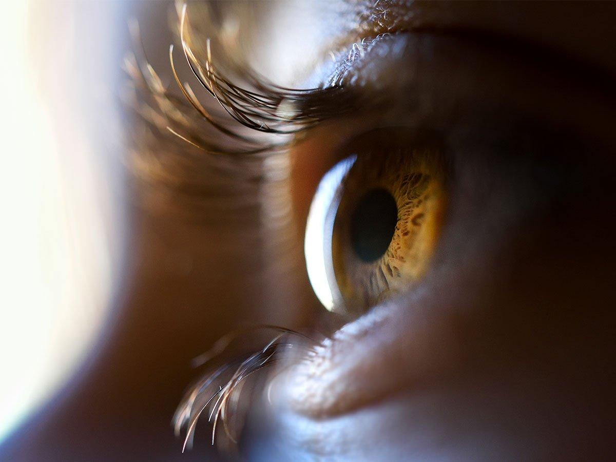 O que você vê? 👀